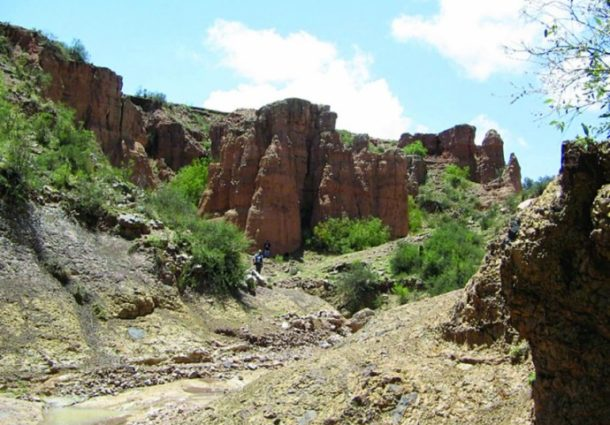 Hallan fósiles de perezosos de baja estatura en Chuquisaca