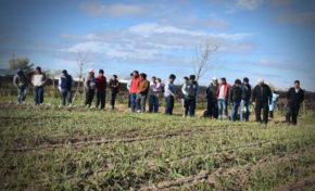 Comunidad boliviana de Merlo conoció el trabajo en las parcelas hortícolas de San Luis
