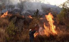 Mujer de 50 años, quien supuestamente habría iniciado el incendio en Tarija, fue arrestada