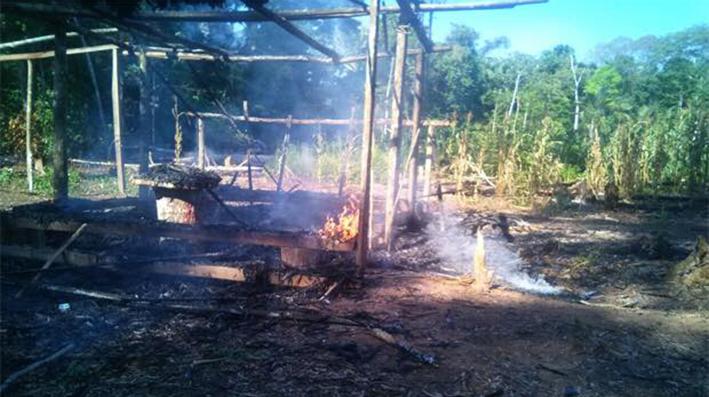 En Ixiamas: Colonos queman casas de indígenas tacanas para copar tierras forestales