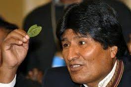 Presidente Morales menciona que la hoja de coca es un símbolo de lucha y unidad boliviana