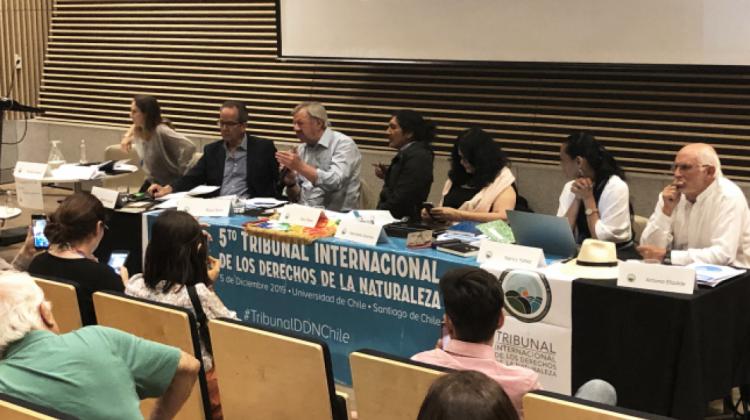 Tribunal Internacional de Derechos de la Naturaleza llegará a Bolivia por ecocidio en la Chiquitania