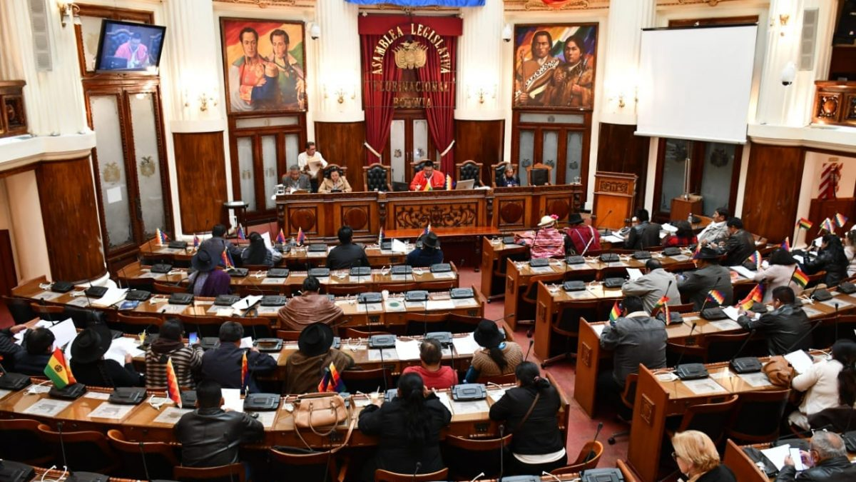 Cámara de Diputados rechaza persecución política en Bolivia